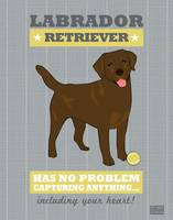 Labrador Retriever3 Gray/Gold