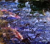 Koi Pond Reflections Batik