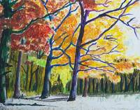 Seasonal Trees, Fall, Autumn