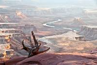_IGP7679.CanyonLands