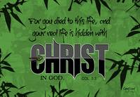 In Christ 1
