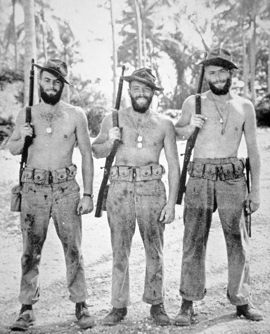 three brothers of the us marine corps in the south by the fine art