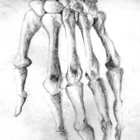 Skeletal Hand Art Prints & Posters by Fari Z