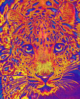 pop art leopard - orange