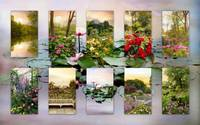 Garden Windows Collage