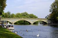 Workman Bridge and The River Avon (30133-RDA)