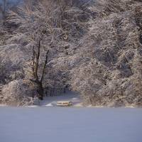 Winter at the Campground Art Prints & Posters by Rick Lee