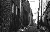 Creepy Alley