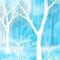 In Winter Art Prints & Posters by Charlene Murray Zatloukal