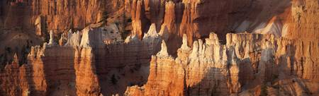 Bryce Canyon Desert Sunrise Panorama