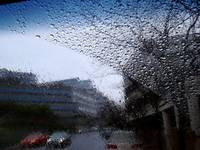 Rainy Day Windshield Series