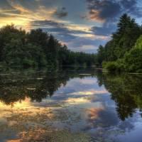Summer Nightfall by Jim Crotty