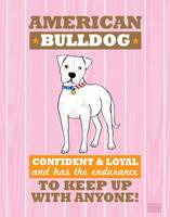 American Bulldog Flag Pink/Orange