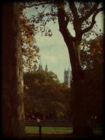 Westminster Abbey from St. James Park