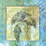 Spa Gingko Postcard 2
