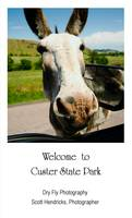 Welcome to Custer State Park - Poster