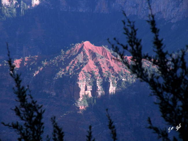 North Rim Mountain Below The Rim 9546