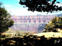 North Rim Red Cliffs 9488
