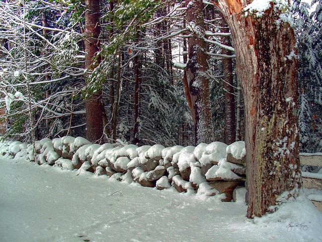 Stone Wall in Winter Coat