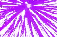 Fire Art Time Warp Purple