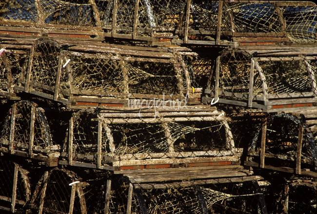 Traditional wooden lobster traps, Cape Cod