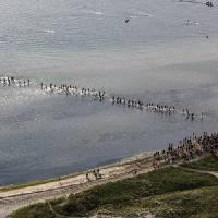 Nantucket Triathlon 2012-102 by George Riethof