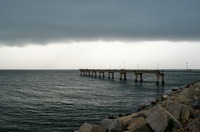Seagull Pier & The Chesapeake Bay