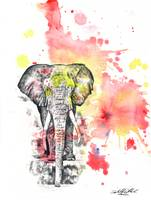 Elephant in Red Splatter Painting