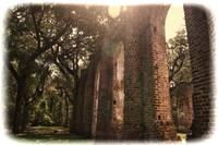 Vintage Old Sheldon Church Ruins