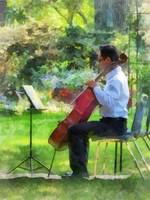 Cellist in the Garden