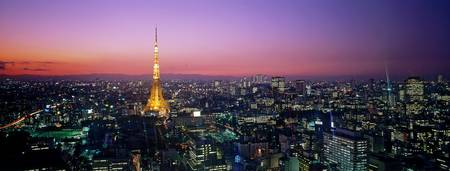 Example of Tokyo skyline in perspective on angled canvas