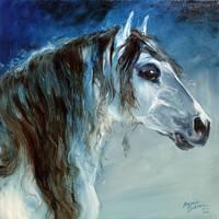 BLUE ROAN MUSTANG by Marcia Baldwin