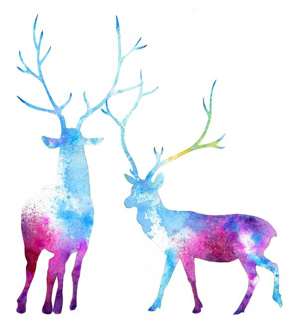 My Deer Galaxy