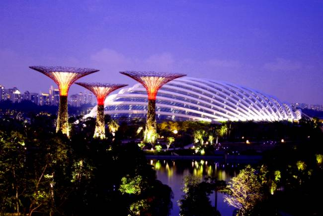 Garden by the Bay singapore evening )MUST BUY !(