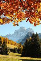 Autumn on the dolomites mountains (vertical)