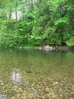 Green River Rock Pool at Flaming Geyser State Park