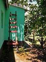 South Africa  Ladder Leaning on House
