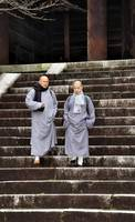Two Buddhist Monks Down the Stairs of Chionin Temp