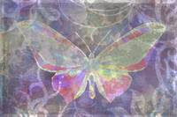 Purple & pink butterfly