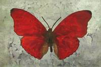 Butterfly in red