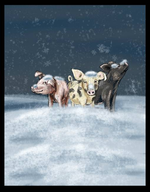 Piglets Huddled in Snow
