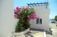 Whitewashed house with bougainvillea