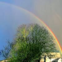 Rainbow Art Prints & Posters by Kendle McLennan