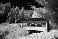 Sandy Creek Covered Bridge 2