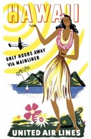 Hawaii Travel Poster 2