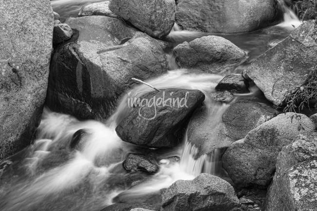 Flowing Down the Colorado St Vrain BW