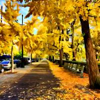 """""""Autumn Walk in NYC"""" by New-Yorkled"""