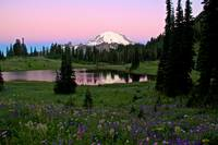 Pastel Skies Over rainier