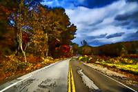 Harriman State Park Fall / Autumn Scene