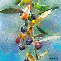 Istrian olives